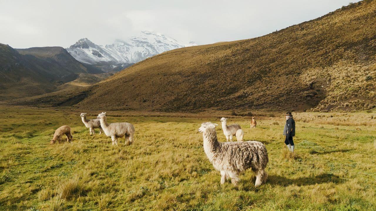 восхождение на Чимборасо и Котопакси Эквадор