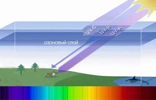 vlijanie-na-organizm-cheloveka-ultrafioletovogo-izluchenij